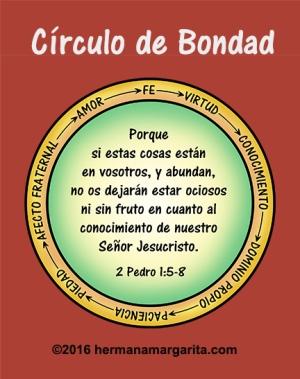 Circulo de bondad 2